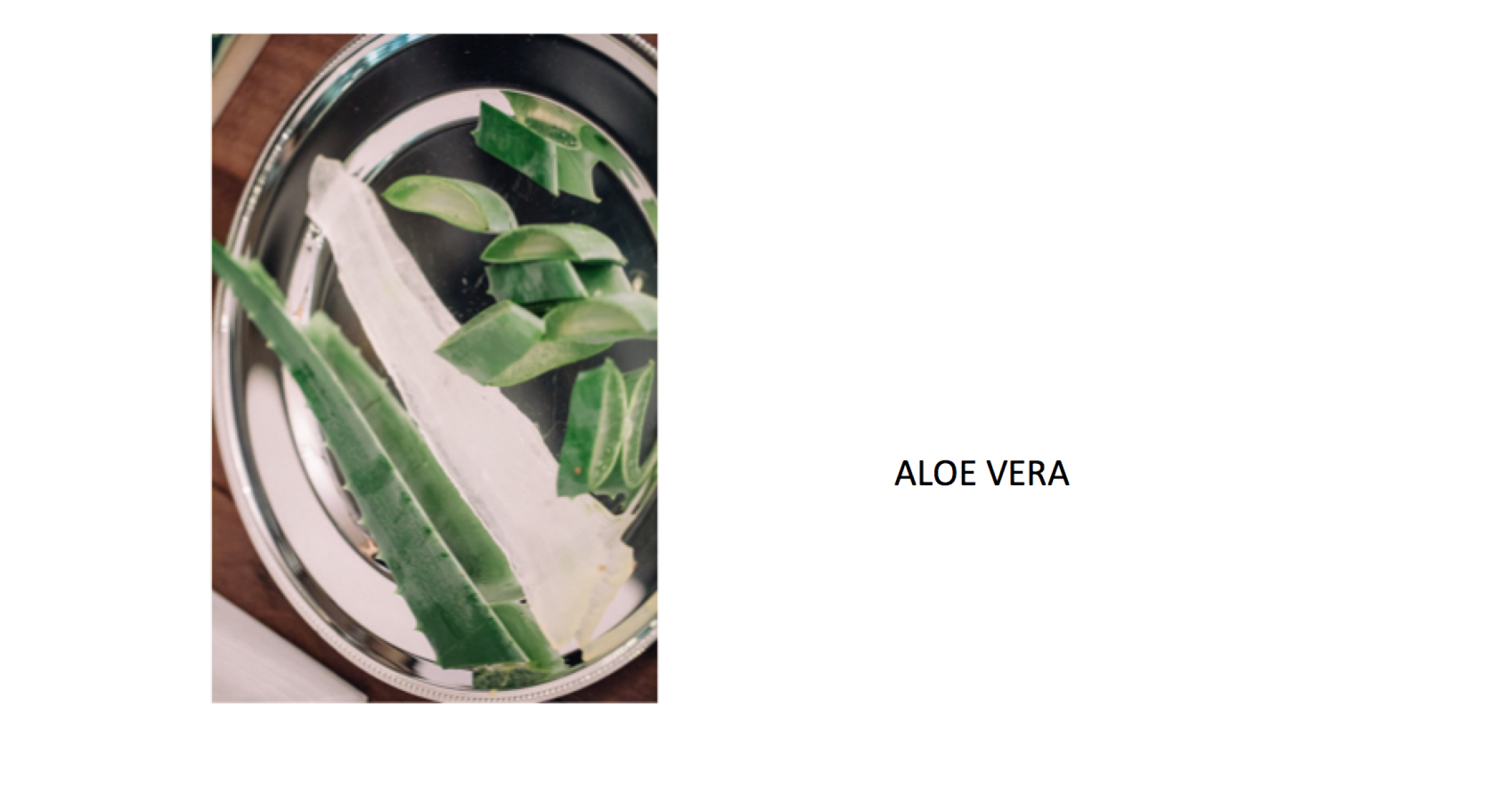 eNVELOPE_ALOEVERA_BEAUTY